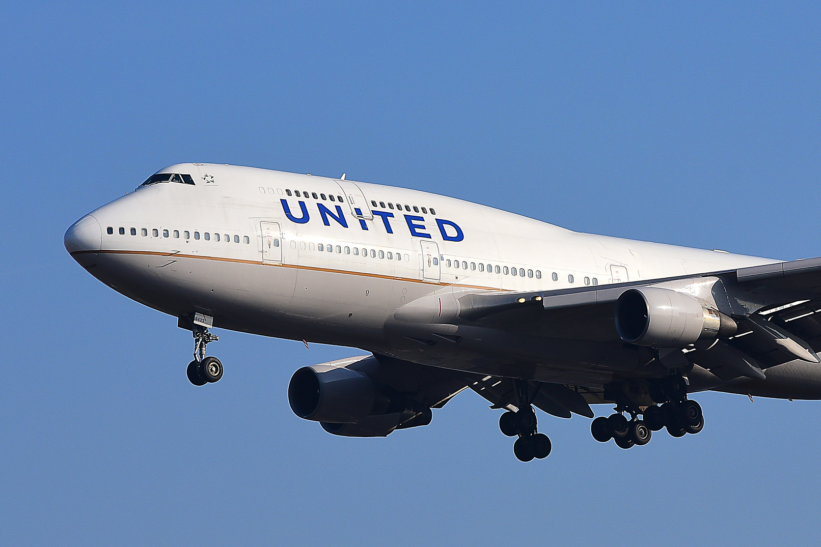 airlines porn United
